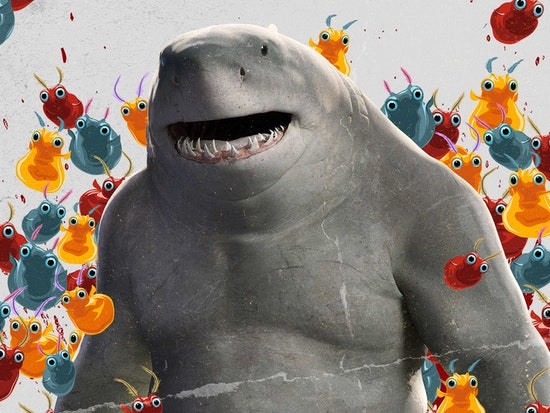 Get to Know!: King Shark