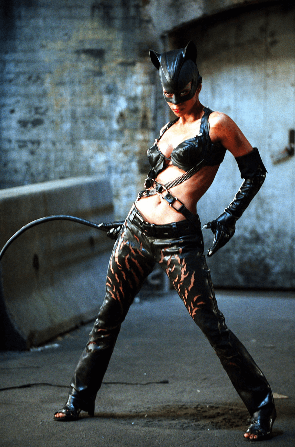 Catwoman Costume 24.png