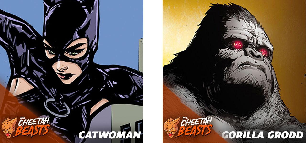 Cat-vs-Grodd.jpg