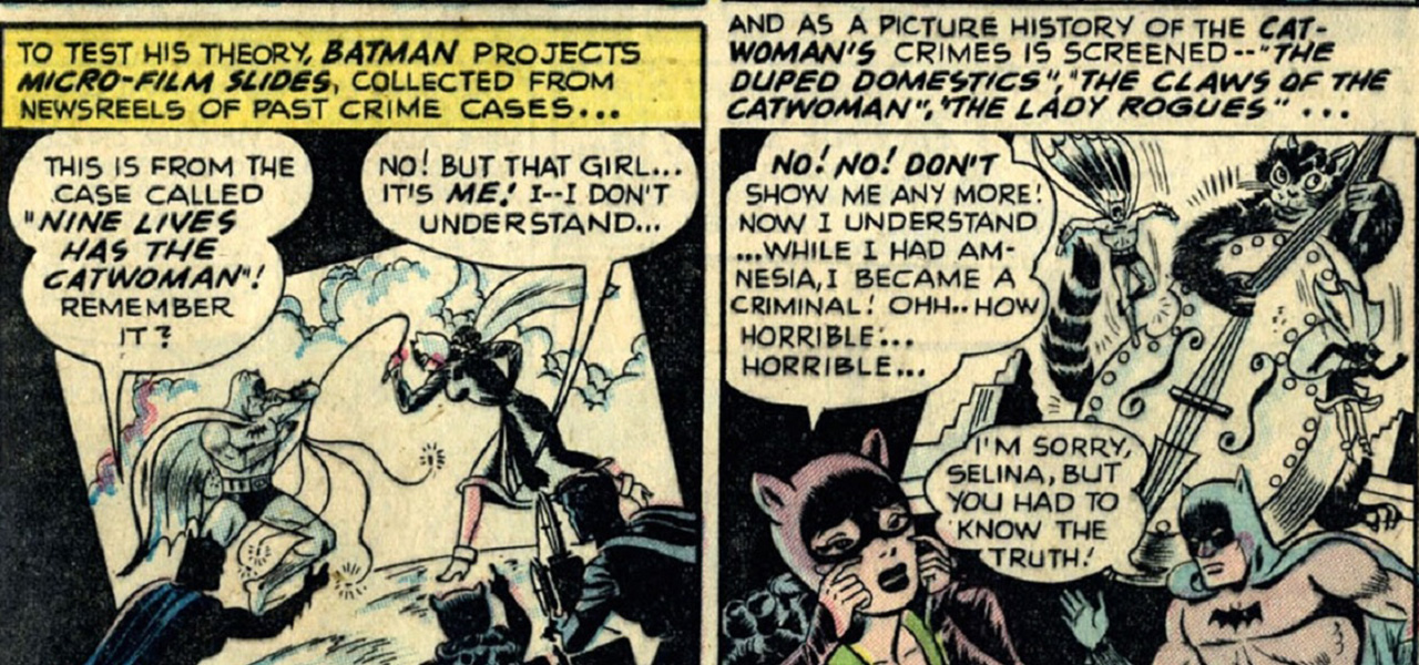 batman-catwoman-first-selina-kyle-amnesia-origin-2.jpg