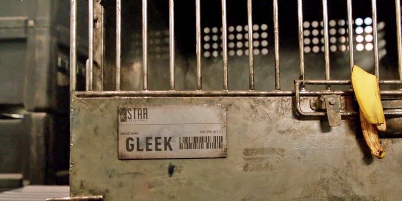 COIE Gleek.jpg