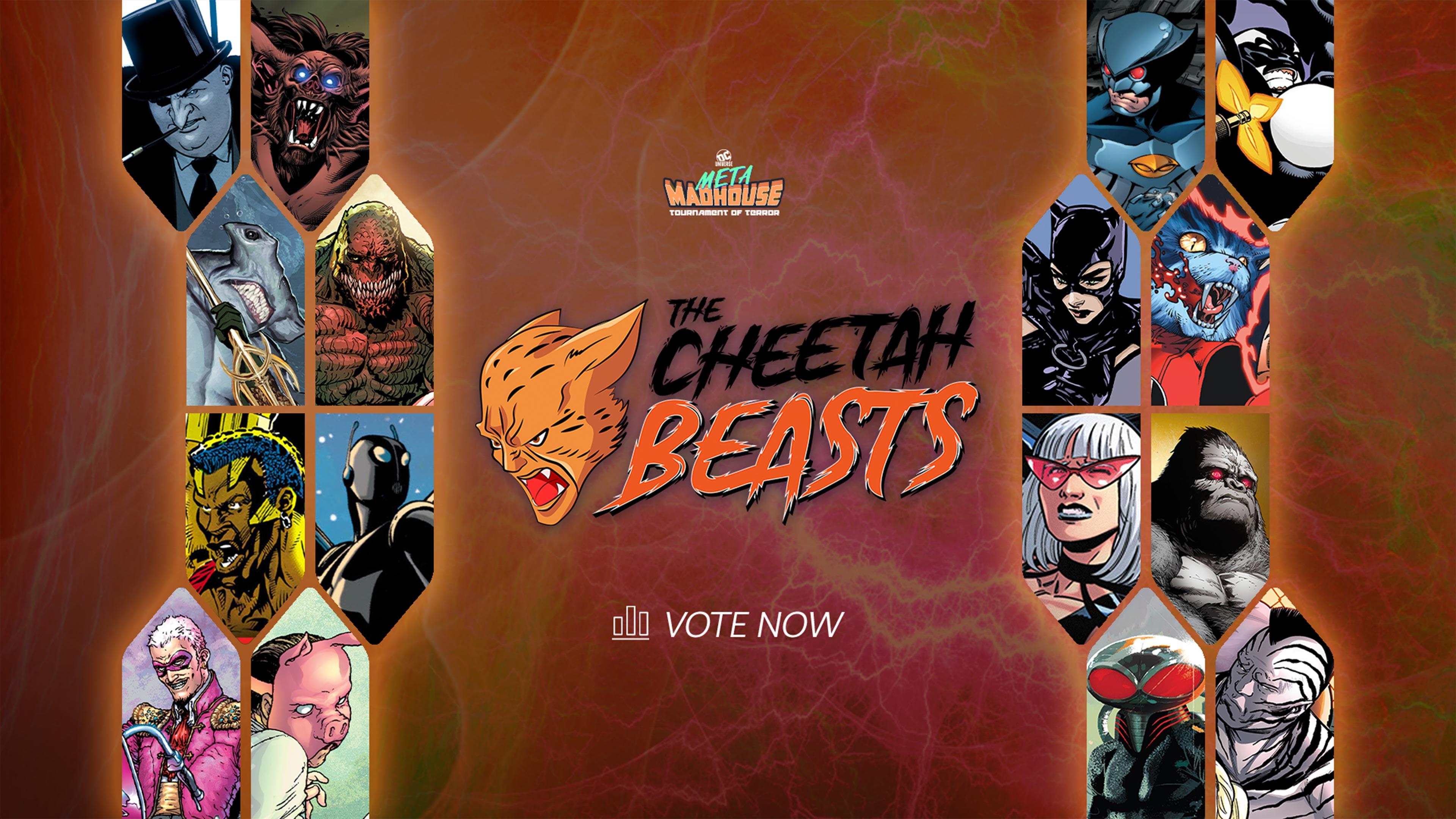 MM_CHEETAH_VOTE_16 players.jpg