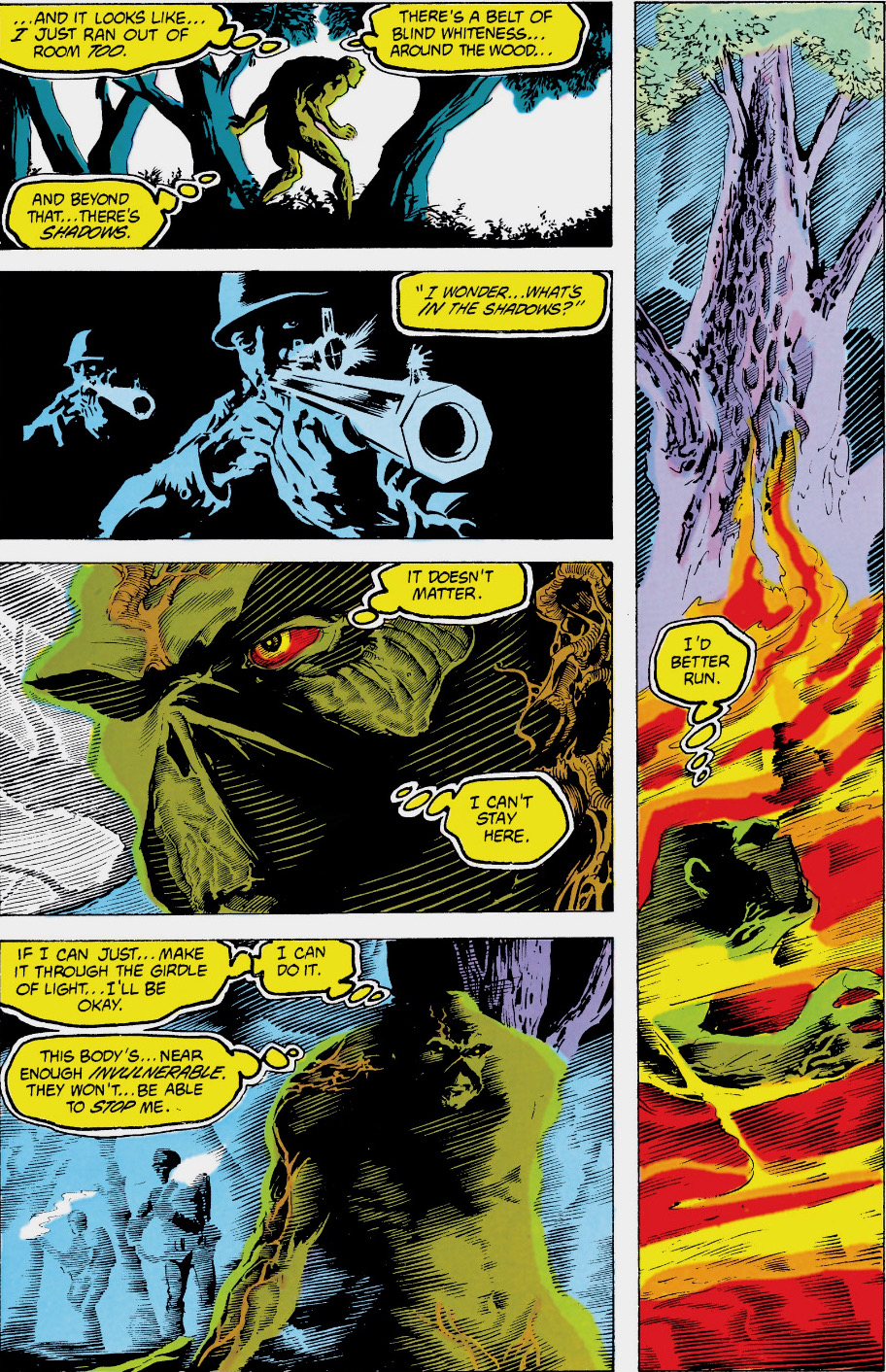 saga of swamp thing 20.JPG