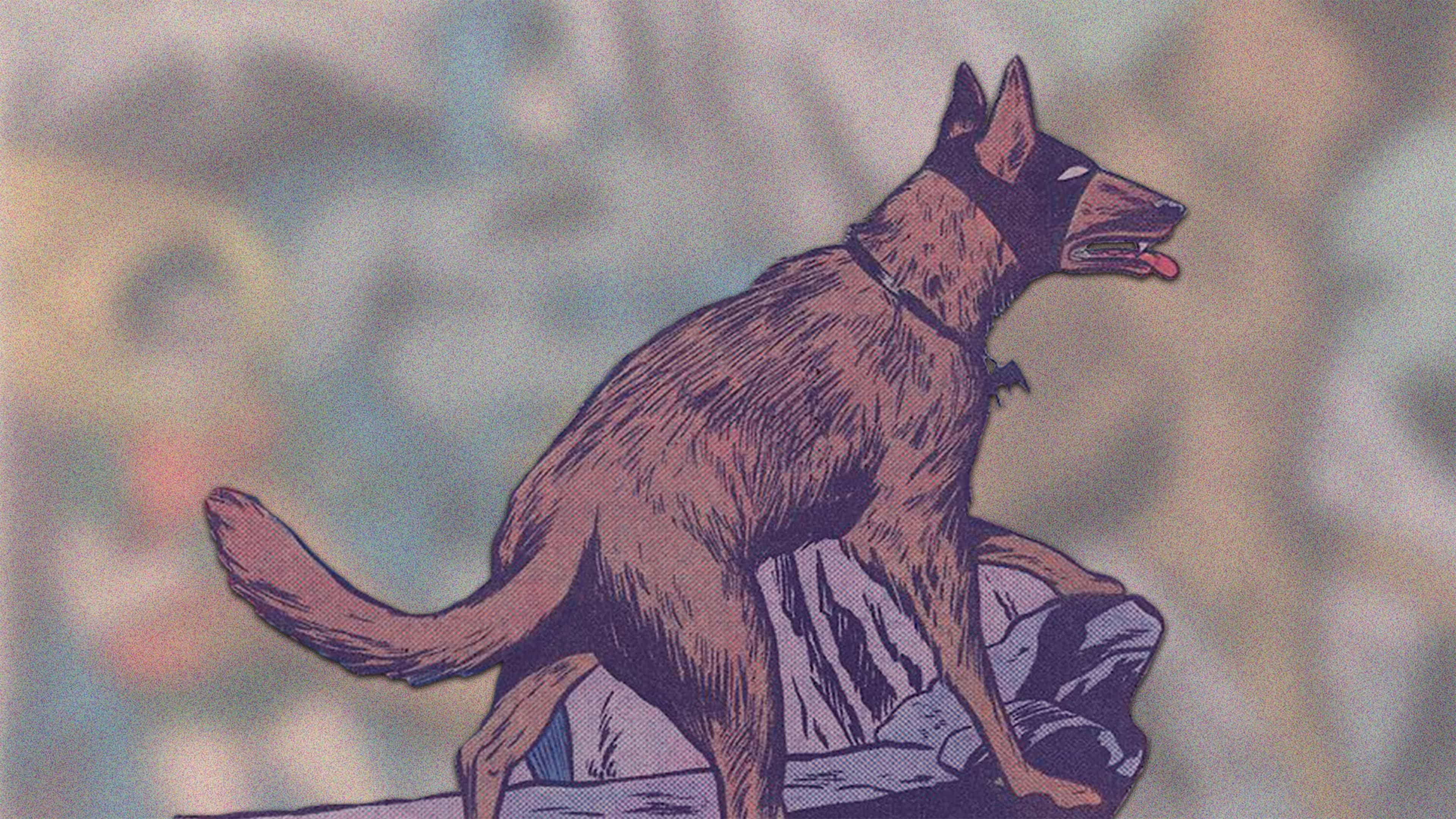 awesomedcdoggos_news_hero-c_v1_191206.jpg