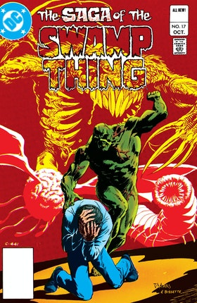 The Saga of the Swamp Thing (1982-) #17