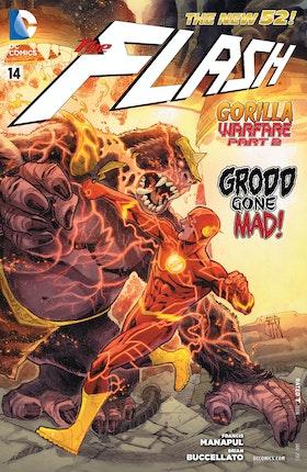 Flash (2011-) #14